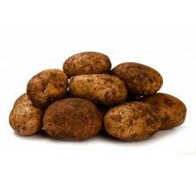 Картофель кг.