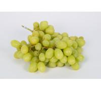 Виноград Кишмиш белый кг.